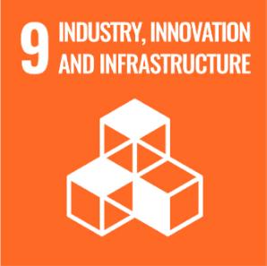 UN-sustainablegoals-Industry